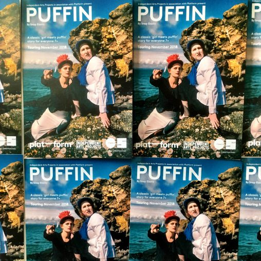 Puffin flyers